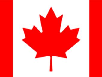 成功地將我們的蔬菜自動包裝機出口到加拿大!