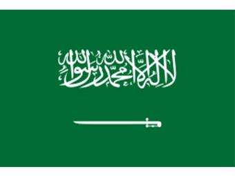來自阿拉伯的新合作案例